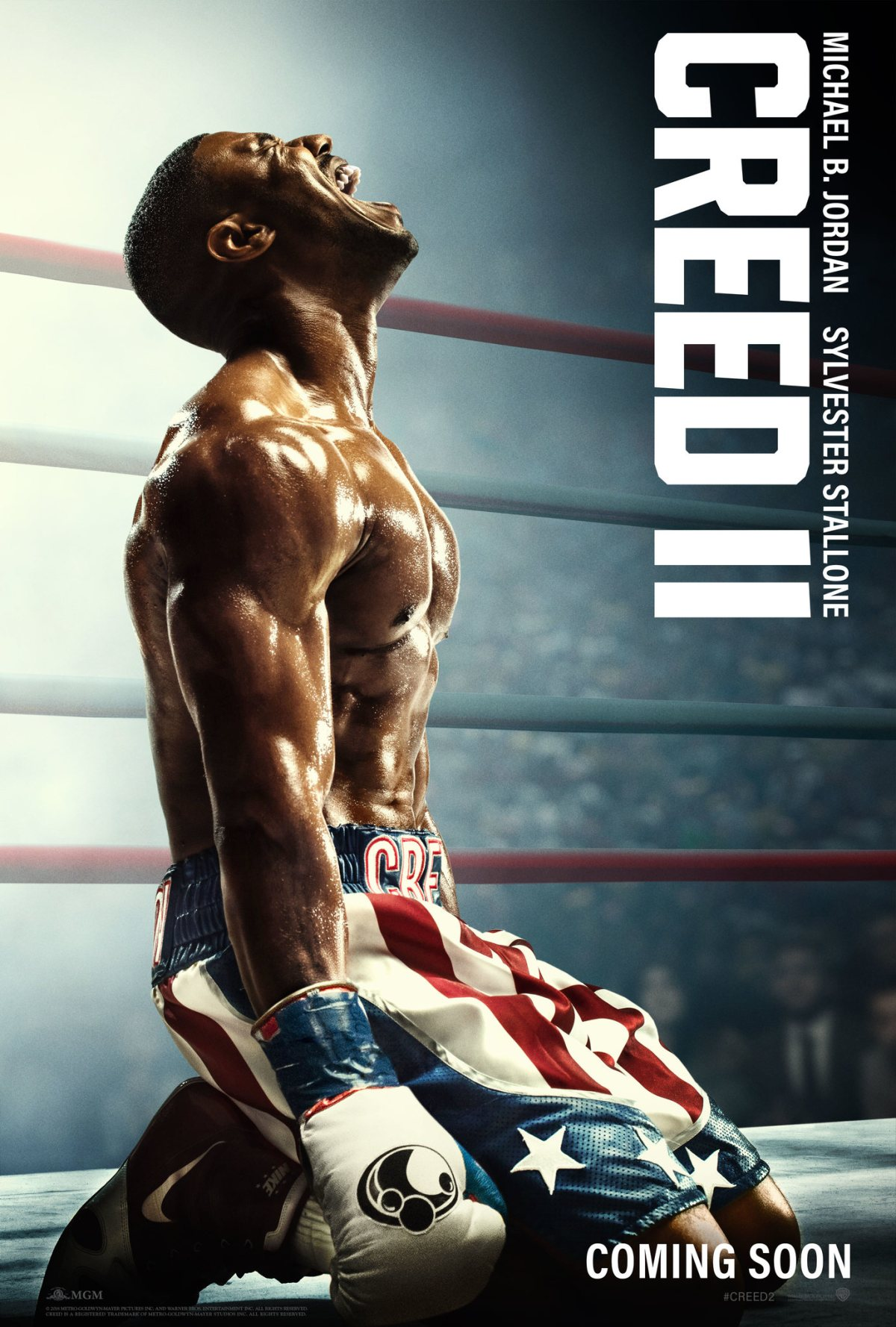"""""""Creed II"""": One-SentenceReview"""